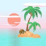 Schildpad op een Strand Royalty-vrije Stock Foto's