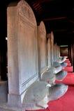Schildpad Steles Stock Afbeeldingen