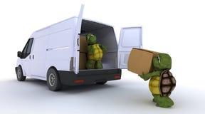 Schildpadden die een bestelwagen laden Stock Foto's