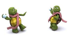 Schildpadden die een sneeuwbalstrijd hebben Royalty-vrije Stock Foto's