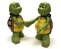 Schildpadden die handen schudden royalty-vrije illustratie