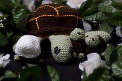 Schildpadden het uitbroeden stock foto
