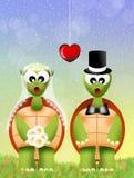 Schildpadden in liefde Royalty-vrije Stock Afbeeldingen