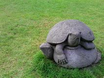 Schildpadstandbeeld Royalty-vrije Stock Foto's