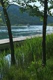 Schilf, Fluss und näherndes Boot Lizenzfreies Stockbild