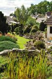 Schilfe in einem Garten Lizenzfreies Stockbild