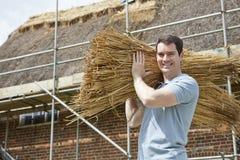 Schilfe Thatcher Carrying Bundles Of, die an Dach arbeiten Stockbild