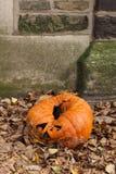 Schimmelige Jack-O-Laterne nach Halloween Stockfoto