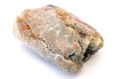 Schimmeliges Brot Stockfotografie