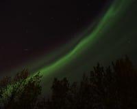 Schimmernde Leuchten Stockbilder