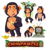 Schimpanse, der Banane hält Charakterdesign eingestellt mit typografischem lizenzfreie abbildung
