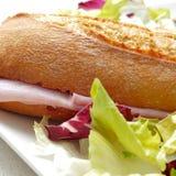 Schinkensandwich und -salat Lizenzfreies Stockfoto