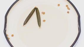 Schioccare del baccello e del seme della radice di Minnie archivi video