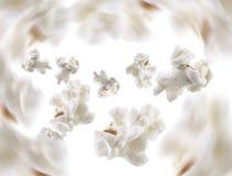 Schioccare del popcorn immagine stock libera da diritti