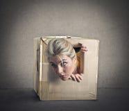 Schioccare fuori da una piccola scatola fotografia stock