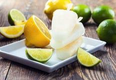 Schiocchi del ghiaccio del succo del limone e della limetta Fotografia Stock Libera da Diritti