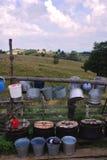 Schip-vouwen in Roemenië Stock Foto's