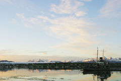 Schipbreuk in de haven van Ushuaia, Tierra Del Fuego Stock Foto's