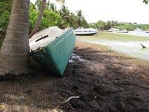 Schipbreuk die op palm op kustlijn liggen Stock Foto's