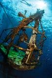 Schipbreuk met vissen Royalty-vrije Stock Foto's