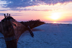 Schipbreuk op het strand Stock Foto