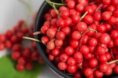 Schisandra chinensis Fruit en Bessen Stock Foto's