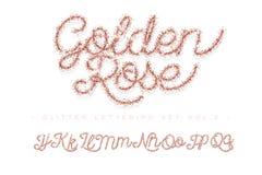 Schitter toenam Gouden Met de hand geschreven alfabet stock afbeelding