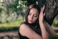 Schitterend brunette Stock Foto's