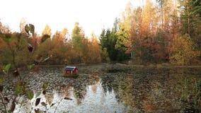 Schitterend die de herfstlandschap met mening van vijver met kleurrijke bomen met weinig vogelhuis wordt omringd op water stock video