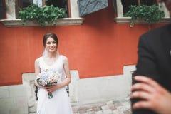 Schitterend huwelijkspaar die in de oude stad van Lviv lopen royalty-vrije stock fotografie