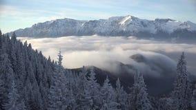 Schitterend landschap van gesneeuwde bomen, bergen en witte pluizige wolken snelle motie timelapse stock video
