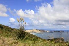 Schitterend oceaanlandschap Royalty-vrije Stock Foto