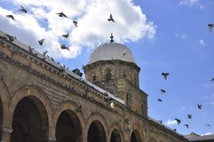 Schitterende architectuurmoskee in Medina Tunis Royalty-vrije Stock Afbeeldingen