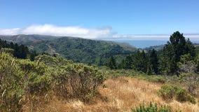 Schitterende bos en oceaan in Marin County Royalty-vrije Stock Foto's