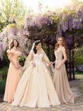 Schitterende bruid in luxueuze huwelijkskleding, die met mooie bruidsmeisjes in elegante kleding stellen Stock Afbeeldingen
