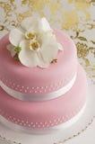 Schitterende cake Royalty-vrije Stock Afbeeldingen