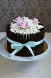 Schitterende cake Stock Foto's
