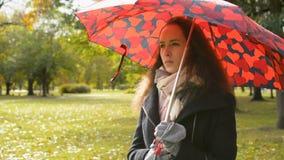Schitterende dame die met grote rode paraplu in het park in gouden de herfstdaling lopen stock videobeelden
