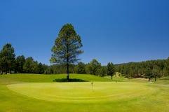 Schitterende golfcursus in Arizona Royalty-vrije Stock Afbeelding