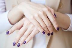 Schitterende manicure, donker purper teder kleurennagellak, close-upfoto Het wijfje overhandigt eenvoudige achtergrond van vrijet Royalty-vrije Stock Foto's