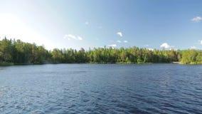 Schitterende mening van bosmeer Verbazende schoonheids Skandinavische aard Lange groene bomen, blauw meerwater stock videobeelden