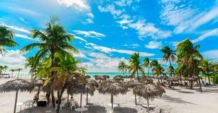 Schitterende mening van een strand en een rustige oceaan met mensen die en op achtergrond op zonnige grote dag ontspannen zwemmen royalty-vrije stock afbeelding