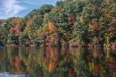 schitterende natuurlijke die achtergrond van de herfstbos in kalm meerwater wordt weerspiegeld Royalty-vrije Stock Foto