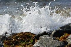 Schiuma del mare Immagine Stock Libera da Diritti