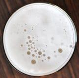 Schiuma della birra Immagine Stock Libera da Diritti