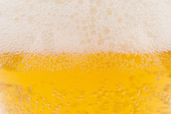 Schiuma della birra Fotografia Stock Libera da Diritti