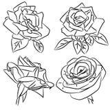 Schizzi in bianco e nero delle rose Fotografia Stock Libera da Diritti
