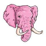 Schizzi capi dell'elefante nel colore e nelle linee rosa illustrazione vettoriale