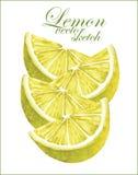 Schizzi del limone Fotografie Stock Libere da Diritti