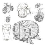 Schizzi della pianta del luppolo, del barilotto di legno e delle tazze di birra Fotografia Stock Libera da Diritti
